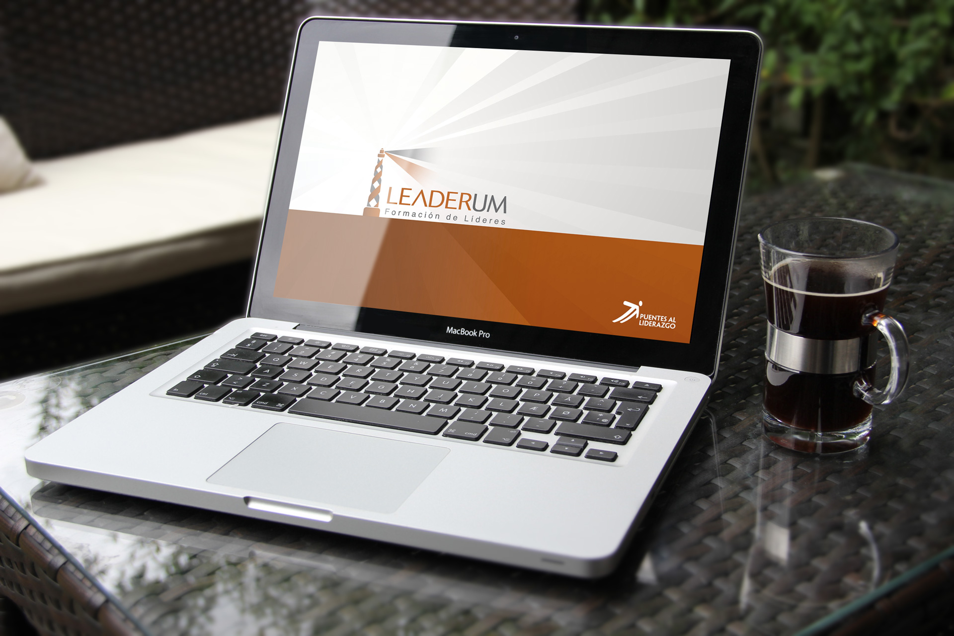 Diseño de Identidad Visual y Logotipo para la marca Leaderum